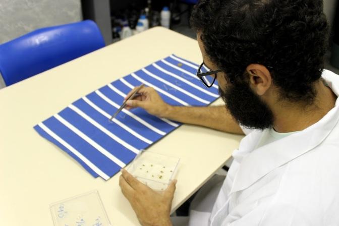 UFRN investe no desenvolvimento tecnológico para as ciências agrárias